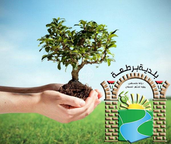 تعلن بلدية برطعة وبالتعاون مع وزارة الزراعة عن مشروع فلسطين خضراء .